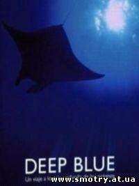 Голубая бездна / Deep Blue (2003) Онлайн